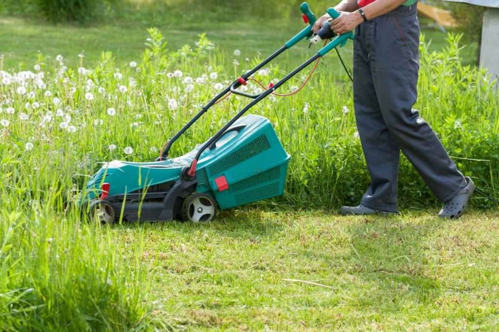 Man running the Self Propelled Lawn Mower in a green plot