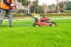 A man using Self Propelled Lawn Mower on the green grass.