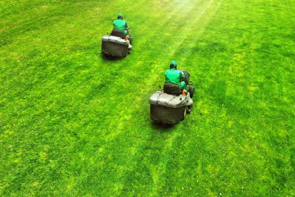 Two lawn mower with two men driving them on green grass