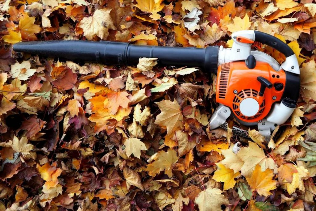 A leaf blower laying over leaf in a ground