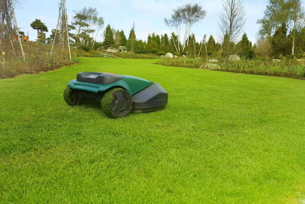 Robot Law Mower working in green fields