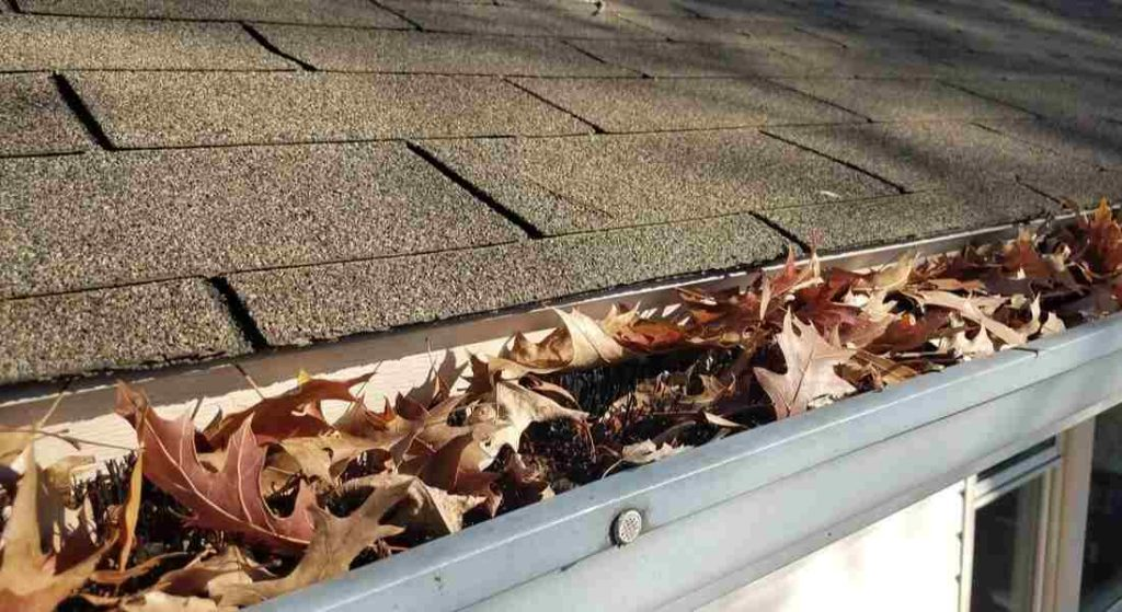A gutter Guard is blocking leaves