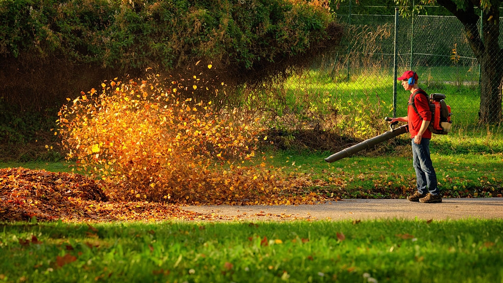 A Vital Step Towards The Finest Lawn - Leaf Blower