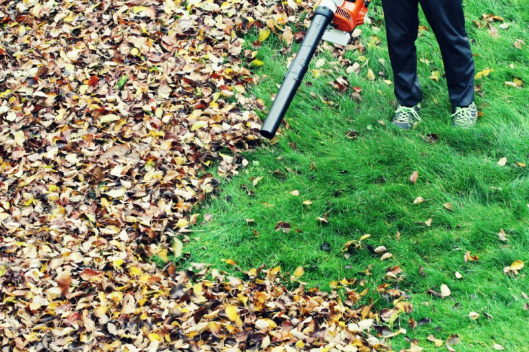 Reviews and Guideline of the Best Cordless Leaf Blowers