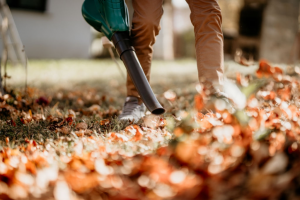 Taking good care of your Garden -Leaf Blower