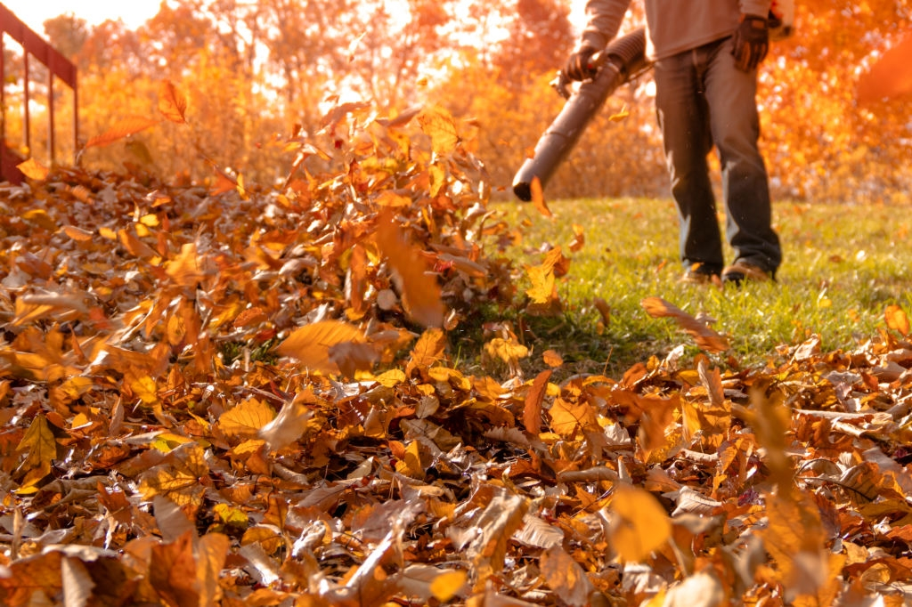 WHAT KIND OF CORDLESS LEAF BLOWERS ARE BEST FOR YOU