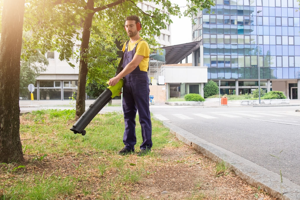 Why you Must Use Cordless Leaf Blowers