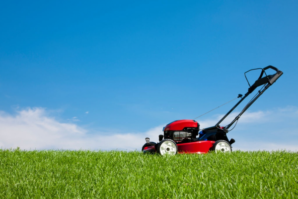 How to Choose the Best Riding Lawn Trimmer in Town