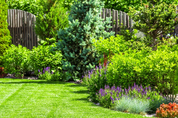 The Ultimate Guide to Garden Upkeep and Mowing