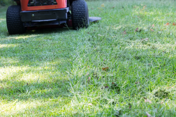 The Ultimate Guide to Pick the Right Zero Turn Mower