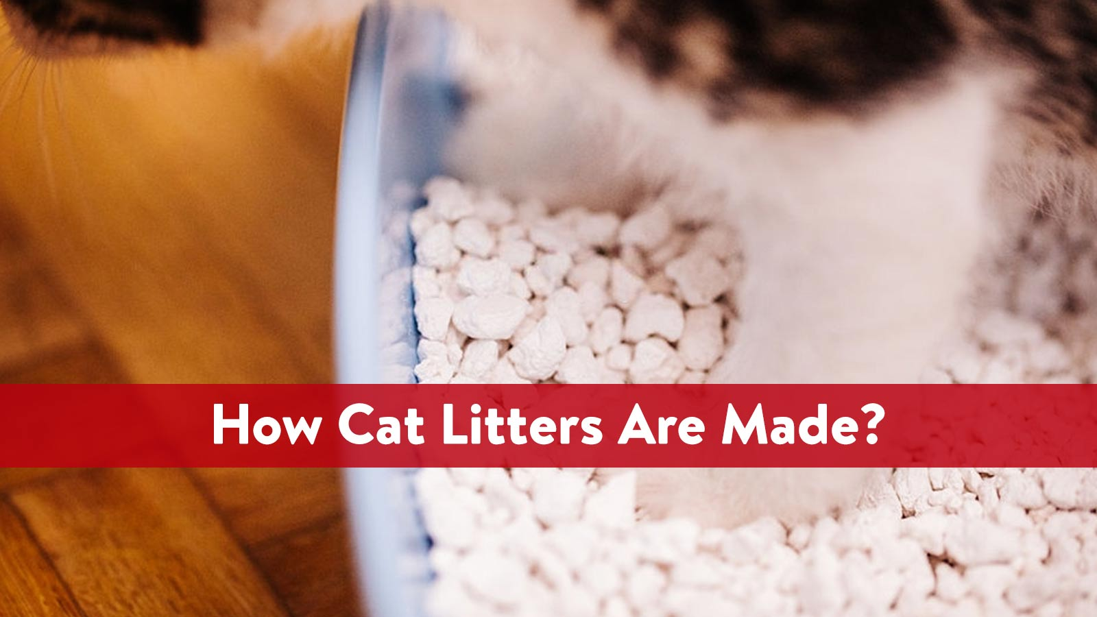 How Cat Litters Are Made