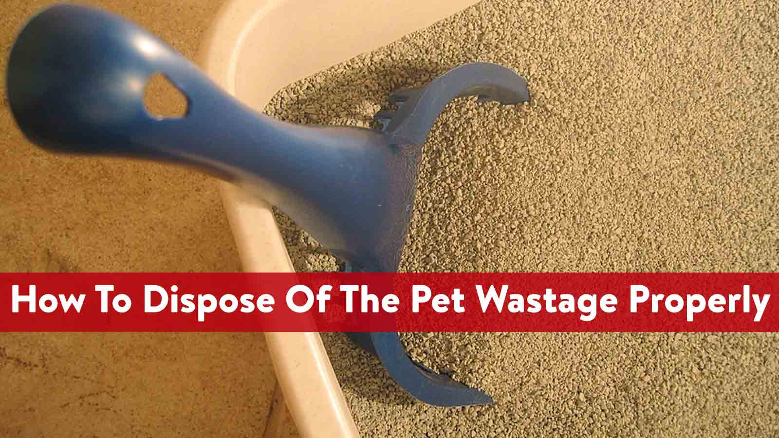 How To Dispose Of The Pet Wastage Properly