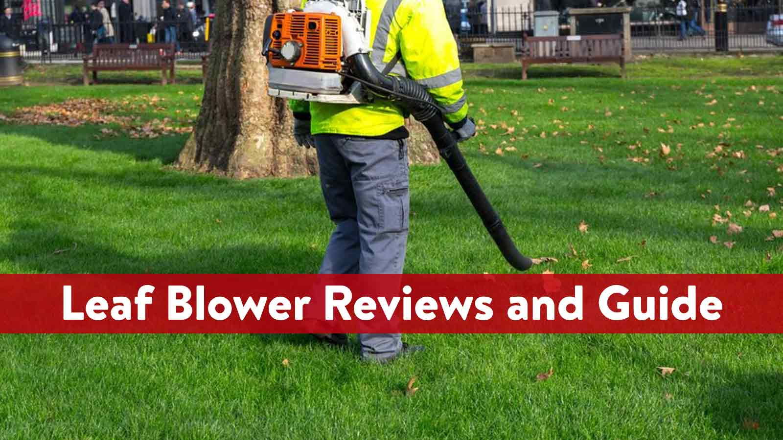 Leaf Blower Reviews and Guide