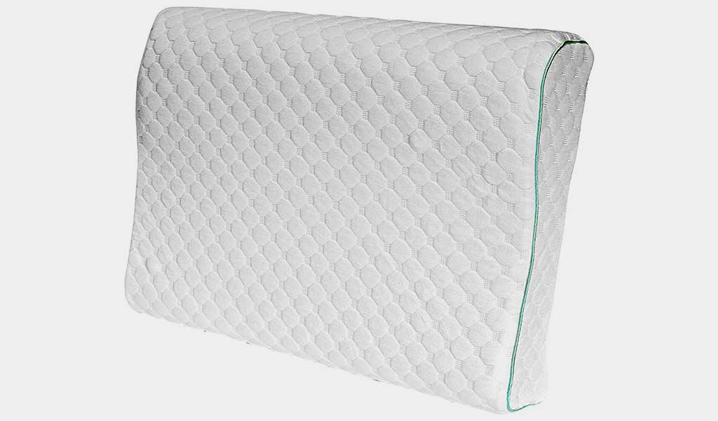 Sealy Memory Foam Contour Pillow