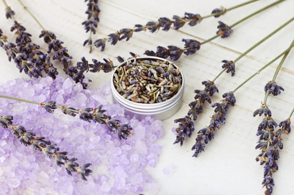Relaxation and Aromatherapy